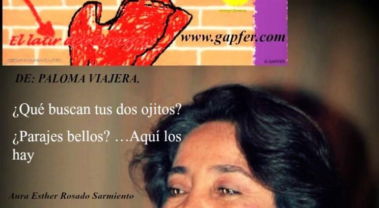 Aura en gapfer.com (3)